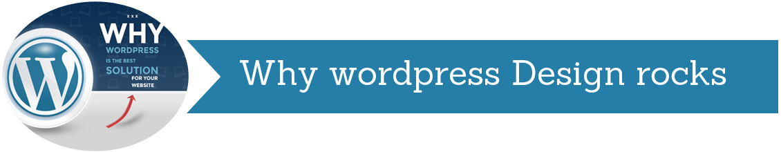 WordPress Website Design Expert NY