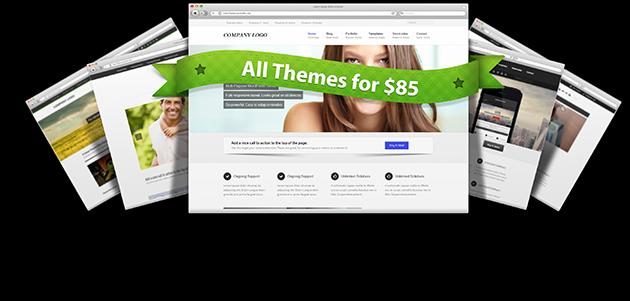 Premium Themes for Magento