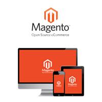 magento-services1