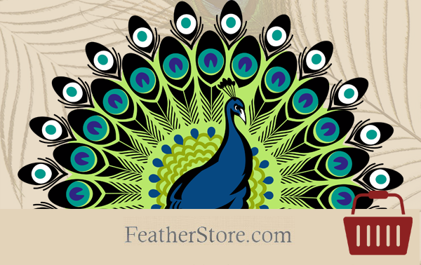 Featherstore – A Volusion Site